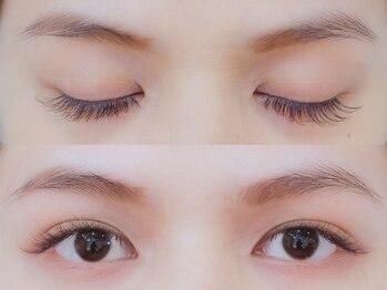 ボネール(nail & eyelash Bounail)/3Dラッシュ80束(240本)