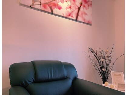 桜の樹の写真