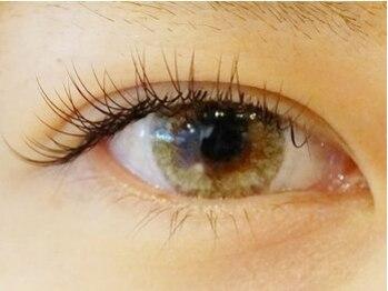 コットンアイラッシュ(cotton eyelash)