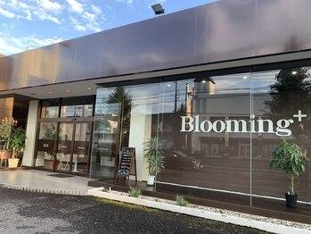 ブルーミングプラス 太田店(Blooming+)(群馬県太田市)