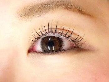 リノ パーマアンドアイラッシュサロン(Lino perm&eyelash salon)の写真/【京橋】ケア付★まつ毛パーマ上or下¥3900!ナチュラルで綺麗な目元を演出したい方や初めての方もオススメ