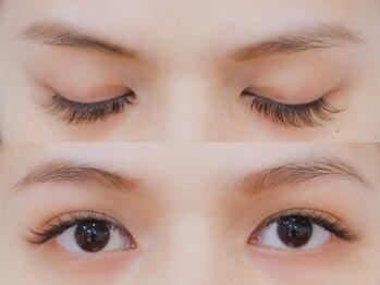 ボネール(nail & eyelash Bounail)/3Dラッシュ120束(360本)