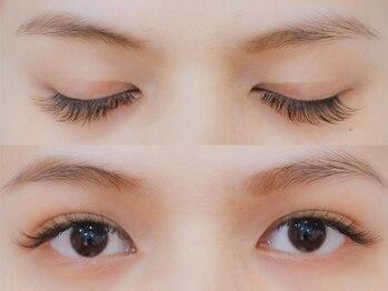 ボネール(nail & eyelash Bounail)/3Dラッシュ140束(420本)