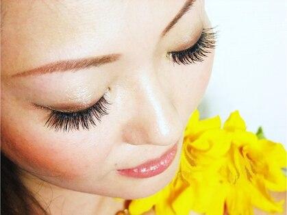 アンジェリークアイラッシュ(Angelique Eye Lash)の写真