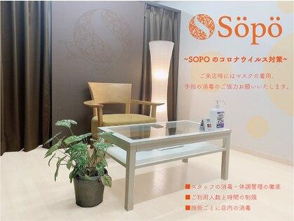 Sopo 【ソポ】 ハイパーナイフ 目黒店