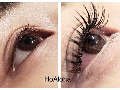 ホアロハ(HoAloha)の写真
