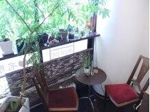 健美サロン名駅美容整膚院の雰囲気(緑に囲まれたカウンセリングルーム)