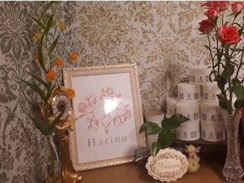 エステ ハリーヌの写真/完全個室・四谷三丁目駅徒歩1分♪女性・男性がこぞって通う、四谷の隠れ家プライベートサロン☆