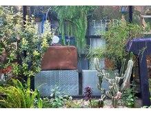リブロ(LIBRO)の雰囲気(グリーンやドライフラワーに囲まれた店内(LIBROネイル三軒茶屋))