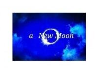 アニュームーン セルバ甲南山手店(a new moon)