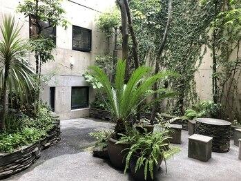 フィットジャム(FIT JAM)/緑あふれる中庭スペース