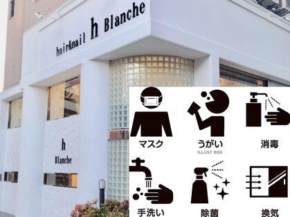 アッシュ ブランシェ(h Blanche)の写真