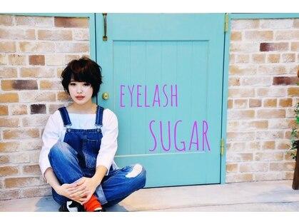 シュガー(Sugar)の写真