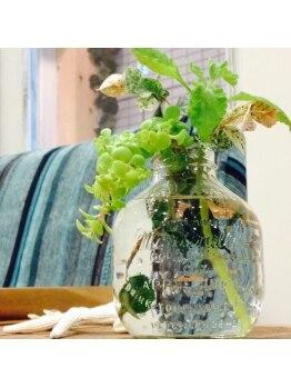リリアル(LiReal)/植物