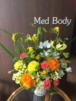 メドボディ(Med Body)