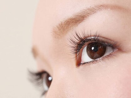カグヤヒメ アイラッシュ(kaguyahime eyelash)の写真