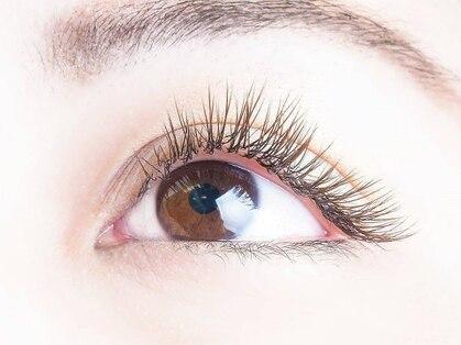 オリアイラッシュ(oli eyelash)の写真