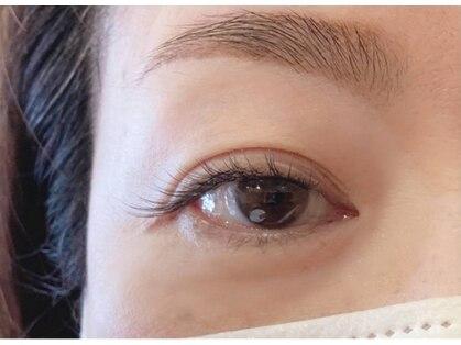グリシーヌ アイラッシュ(glycine eyelash)の写真