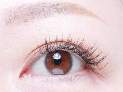 アイラッシュフリカケ(Eyelash furicake)の写真