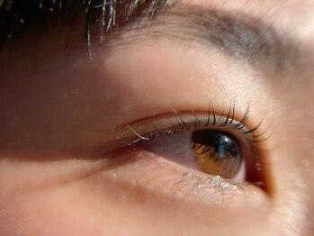オビエントアイラッシュ(obient eyelash)の写真/【上まつげパーマ¥5940】自他店オフ&トリートメント込みが嬉しい☆ナチュラルな目元を叶える♪