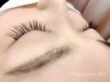 ホワイトカメリア(White Camellia)/フラットラッシュ120本
