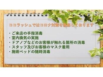 ココラッシュ 柏マルイ店(千葉県柏市)