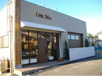 フォスキーア(foschia)