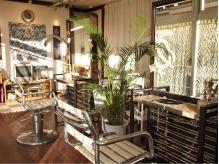 観葉植物や熱帯魚。。自然が多く温かみのある店内です