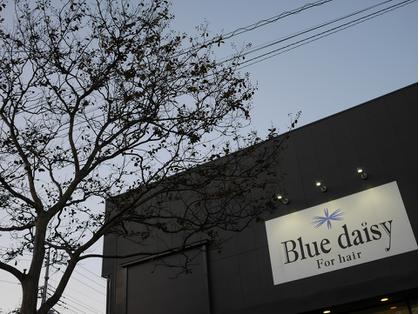 ブルーデイジーフォーヘアー(Blue daisy For hair) image