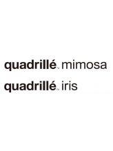 カドリエイリスミモザ(quadrille iris mimosa)