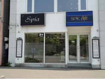 スピックアジール(SPIC Agile)