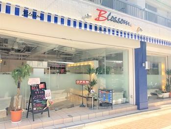 ブロッサム ときわ台南口店(Blossom)の写真