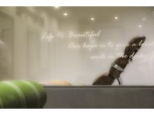 完全個室完備☆極上のヘッドスパは五感で癒される