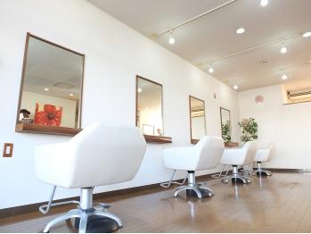 ヘアアート ガジュマル 高崎店(Hair Art gajumale)