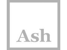 アッシュ 武蔵小杉店(Ash)