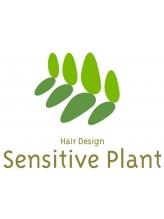 センシティブプラント(Sensitive Plant)