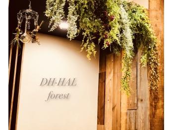 ディーエイチ ハル フォレスト(Dh-HAL forest)