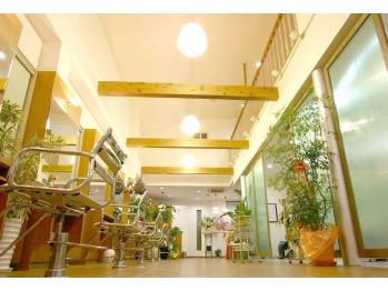 美容室 セラヴィ 福島本店