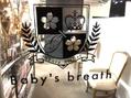 ベイビーズブレス(Baby's breath)