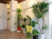 お花や植物に囲まれたやさしい空間です。