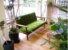 ウェイティングスペース。観葉植物も多く癒されます。