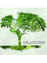 グランデム(GRANDEM)
