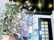 春は山桜…