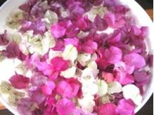 アロマの香りはその日の気分で選べます♪【LANGE 新宿 美容室】