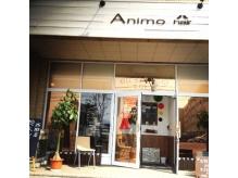 アニモヘアー(Animo hair)