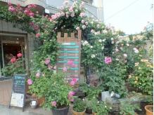 春~秋には数種類のバラが♪冬はライトアップが印象的な外観
