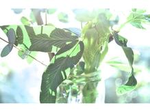 ≪3≫お花屋さんから届く緑やお花で、季節を感じて下さい。