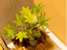 ちょっと珍しい和風サロン♪木や竹の温もりに癒されてください★