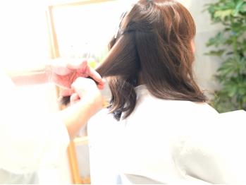 アネモネ(Anemone)