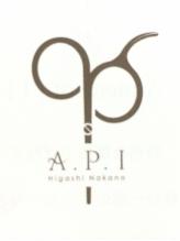 エーピーアイ(A.P.I)